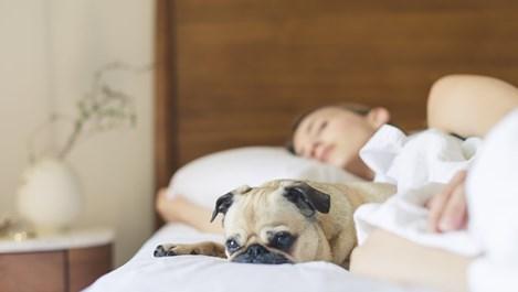 4 ползи от спането в студена стая
