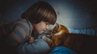 Какви домашни любимци са подходящи за различните детски възрасти