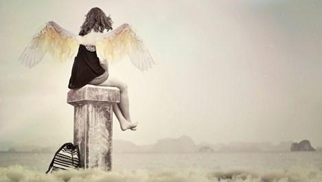 Ангелите си имат професии