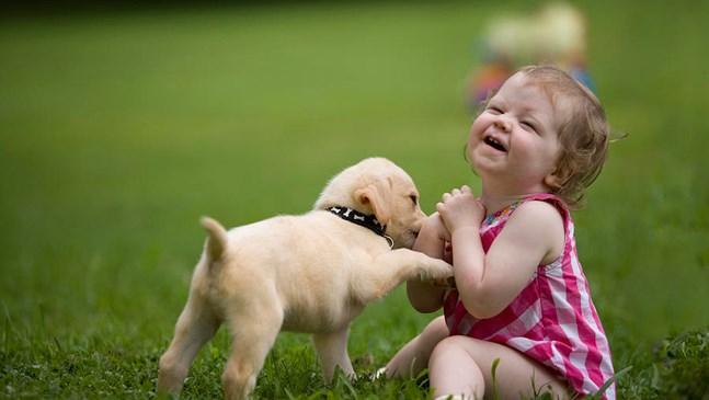 Мамо, мамо! Искам кученце!