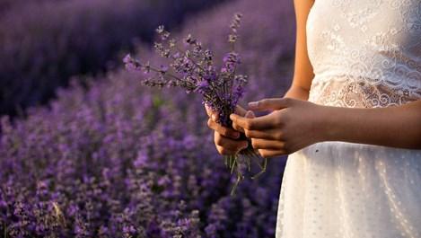 Подправки и билки, които се грижат безупречно за тялото