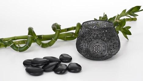 Шиладжит - черното злато на Аюрведа