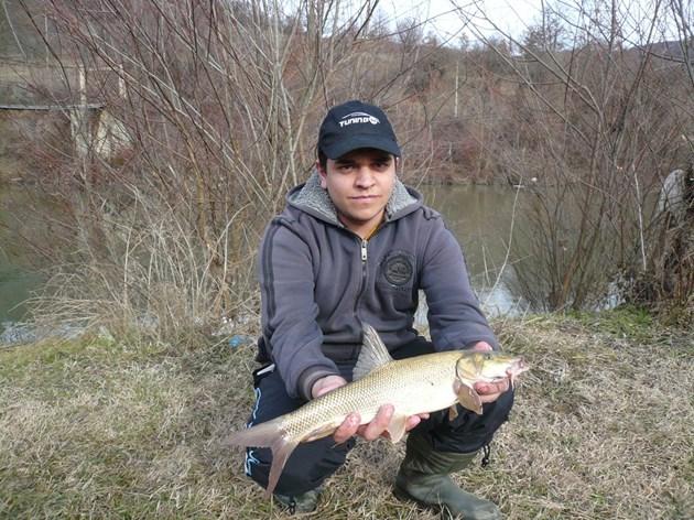 Река Искър се напълни с риба