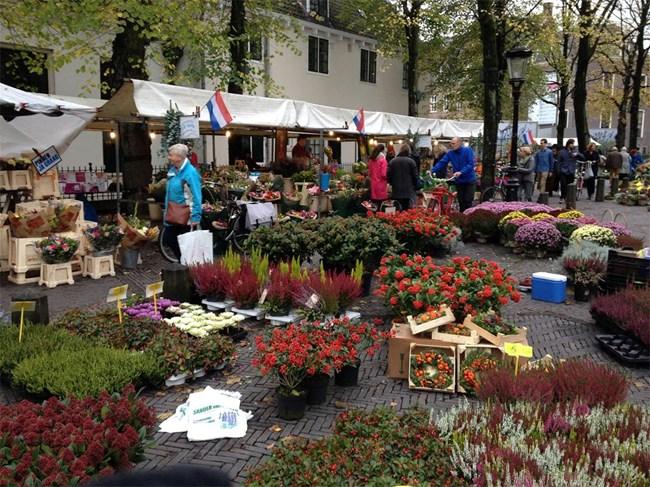 Пазарът на цветя в Ютрехт е впечатляващ дори през есента. Влизайки в него, всъщност се забравя, че е студено, защото цветовете на красивите растения носят усещането за лято.