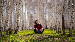 Четирите правила на даоизма за добро живеене