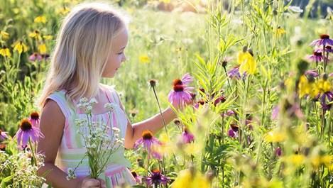 Опасностите, които дебнат децата през лятото