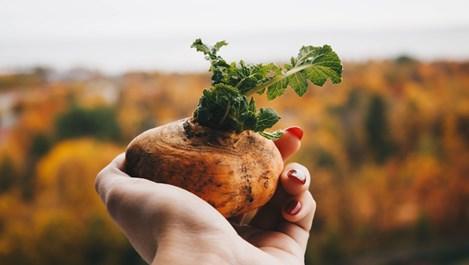 Изненадващи неща, които може да почистим с картоф