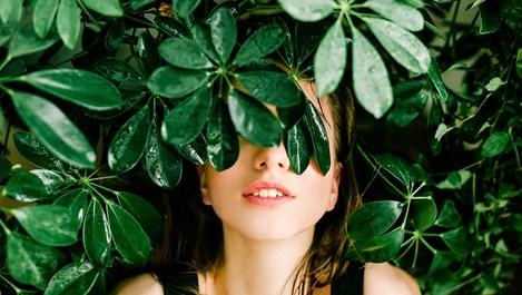 Фитостероли за по-стегната и хидратирана кожа