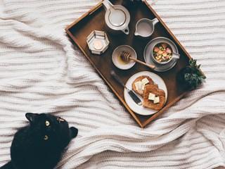 Суровоядната диета BARF за котки - полезна или не?