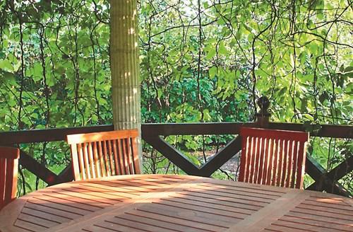 Правила за мързеливия градинар