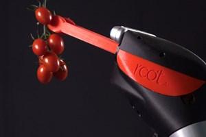 Хващачите на робота достигат дълбоко в заплетени лози и взимат нежно по един плод