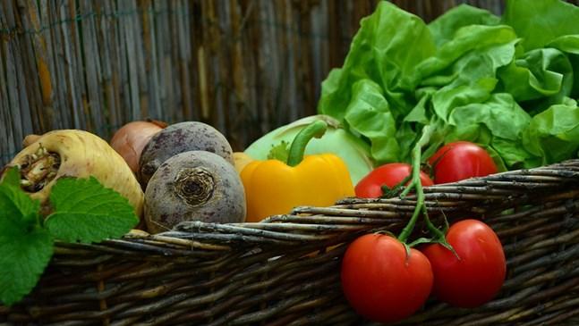 В какъв вид да давате на бебето различните зеленчуци