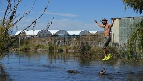 Американец мина по въже над блато, пълно с алигатори (видео)