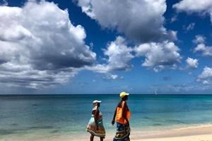 Жени обикалят по плажовете и продават мауби в пластмасови бутилки