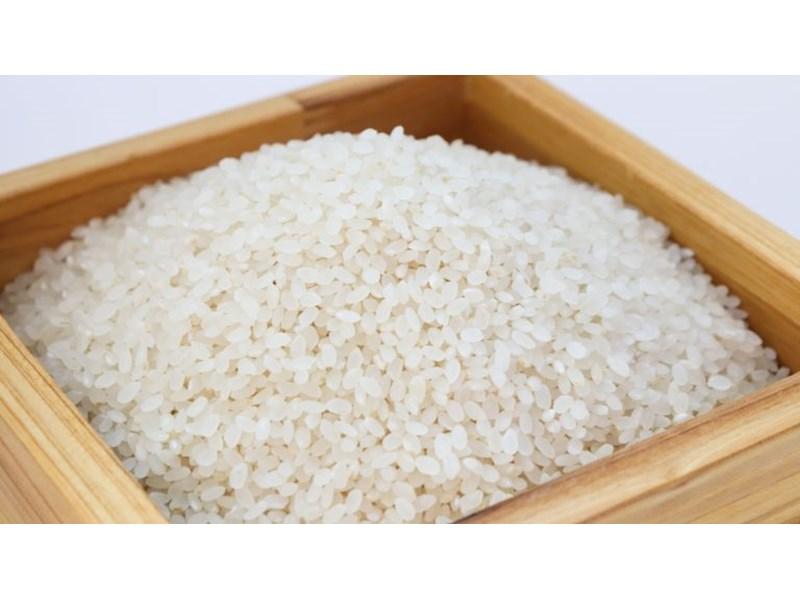 Китайски учени създадоха ГМО ориз, който сваля високо..