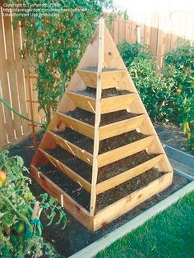 Пирамидата се използва масово и за успешно отглеждане на много зеленчукови растения в двора, пести място