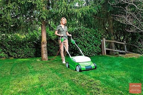 Грижи за тревните площи през юли