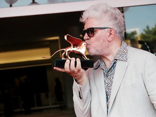 Показват филми на Педро Алмодовар и Реджина Кинг на фестивала във Венеция