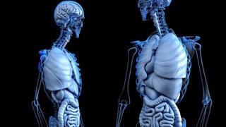 6 съвета за здрав черен дроб