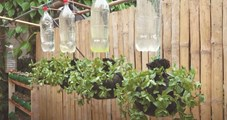 НАПРАВИ СИ САМ: Висяща билкова градина от мрежа