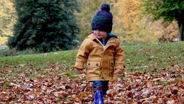 Накъде с децата – 29 октомври – 1 ноември