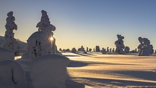 Мистерията на зимното слънцестоене
