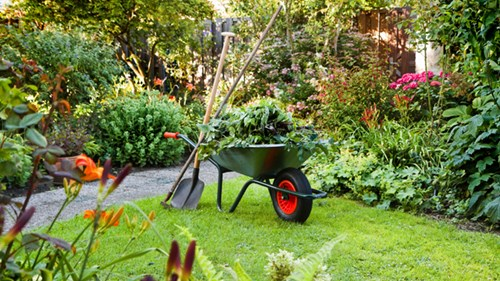 Сезонно в градината