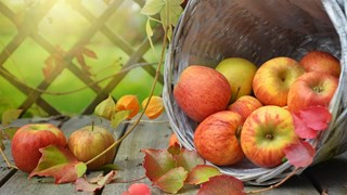 4 научно доказани бабини рецепти за здраве