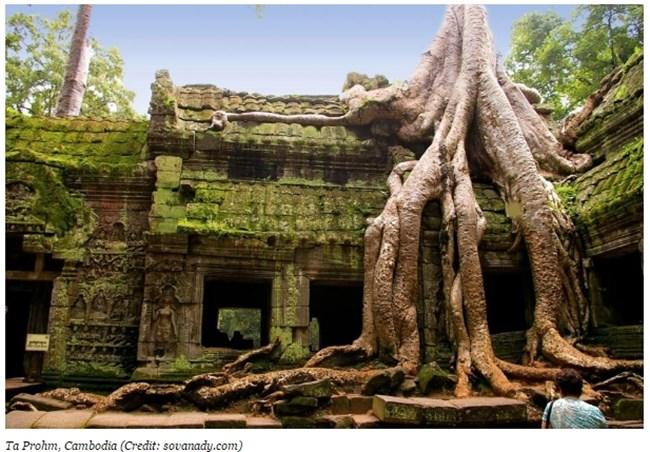 Храмът Та Пром, Камбоджа Снимка: forbes.com