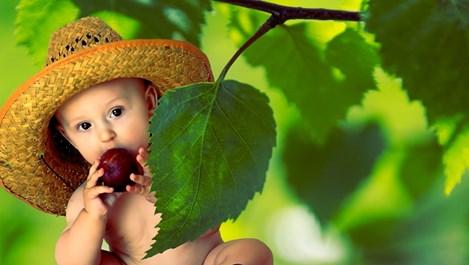 Как правилно да захраним бебето