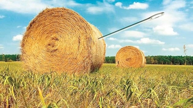 Завеждащият отделението по токсикология в лабораторията на Университета на Мисури Тим Евънс препоръчва на фермерите още при покупката на сеното да го изследват за нитрати и нитрити