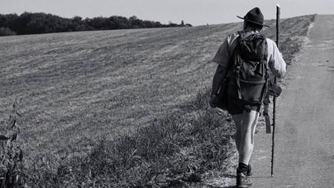 За какво е полезно ходенето?
