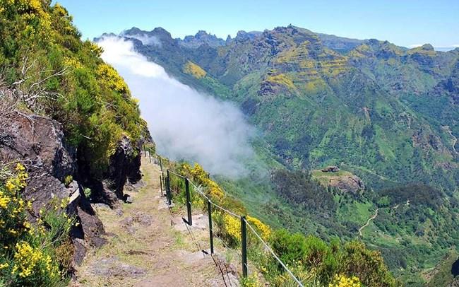 Подобни пътеки опасват острова, позволявайки приятни разходки из дивата природа