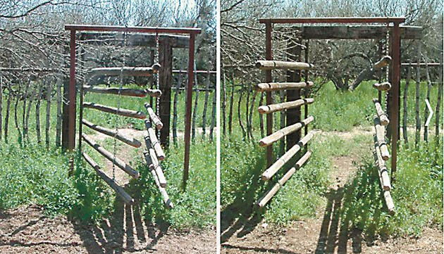 Може да се оставя отворено и говедата могат да влизат и излизат в заграждението