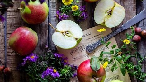 Кои храни са нужни за здрава жлъчка