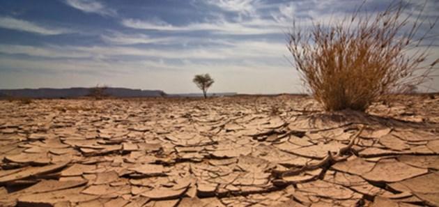 Колко дни може човек да живее без вода?