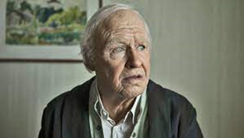 100-годишният швед Алан Карлсон скаче през прозореца на старчески дом исе впуска в серия от приключения. За тях има книга и е заснет филм през 2013 г.