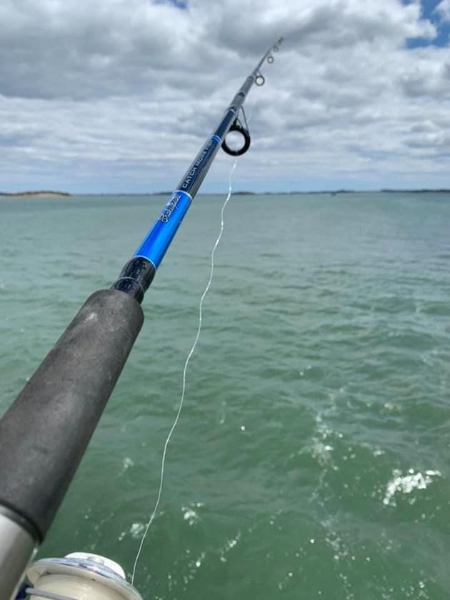 Ще има риболовен билет и за Черно море (Обзор)