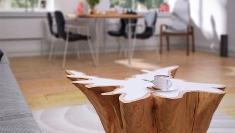 Пън в интериора и в домакинството (галерия)