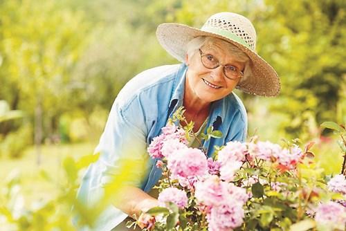 Градинарство за здраве - Знаете ли, че почвата е антидепресант?