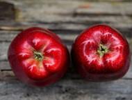 Д-р Митко Ригов: Ябълката е специалист по вътрешно чистене