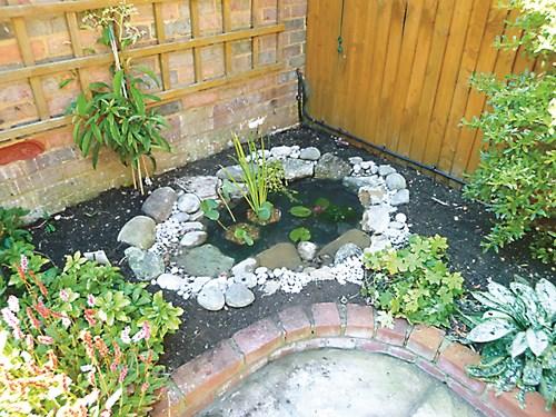 Миниводна градина