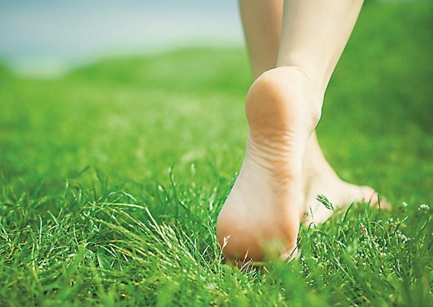Редовно косете тревите в дворовете и около тях