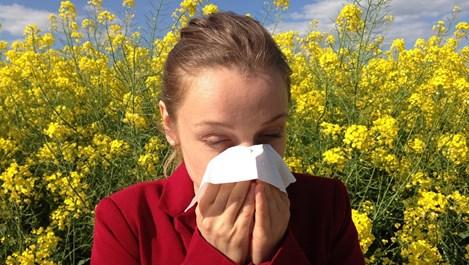 Алергия се лекува и с натурални средства