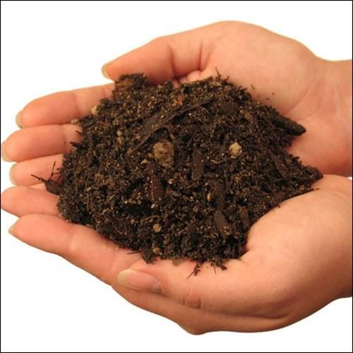 Червеите - признак за качество на почвата