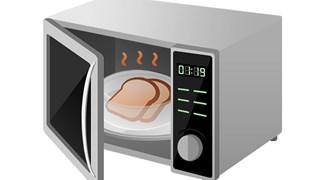 Необичайни употреби на микровълновата печка