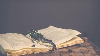 7 скъпоценни цитата от Омир