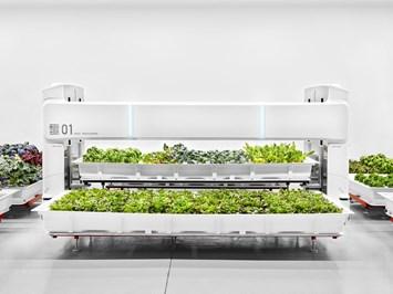 Автономните ферми в градскитецентрове са истинска революция