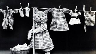 Грешки при прането на дрехите, които ги прецакват