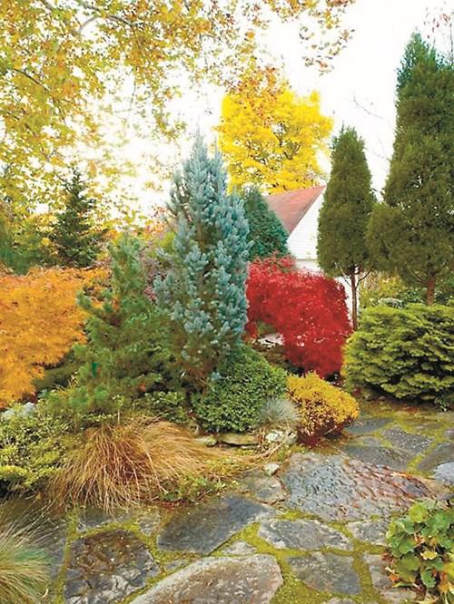 Цветът на есента в градината
